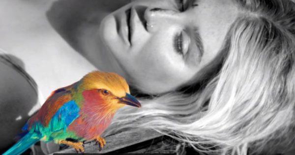 Praying de Kesha canción comeback