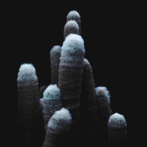 Mejores discos españoles de 2018 Tropismes de Daniel Van Lion