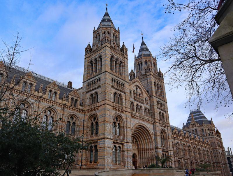 Museo de Historia Natural de Londres, co-estrella en Introvert de Little Simz