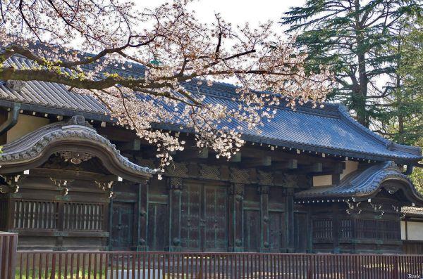 Puerta Kuromon Tokio