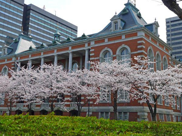 Cerezos en flor en Tokio